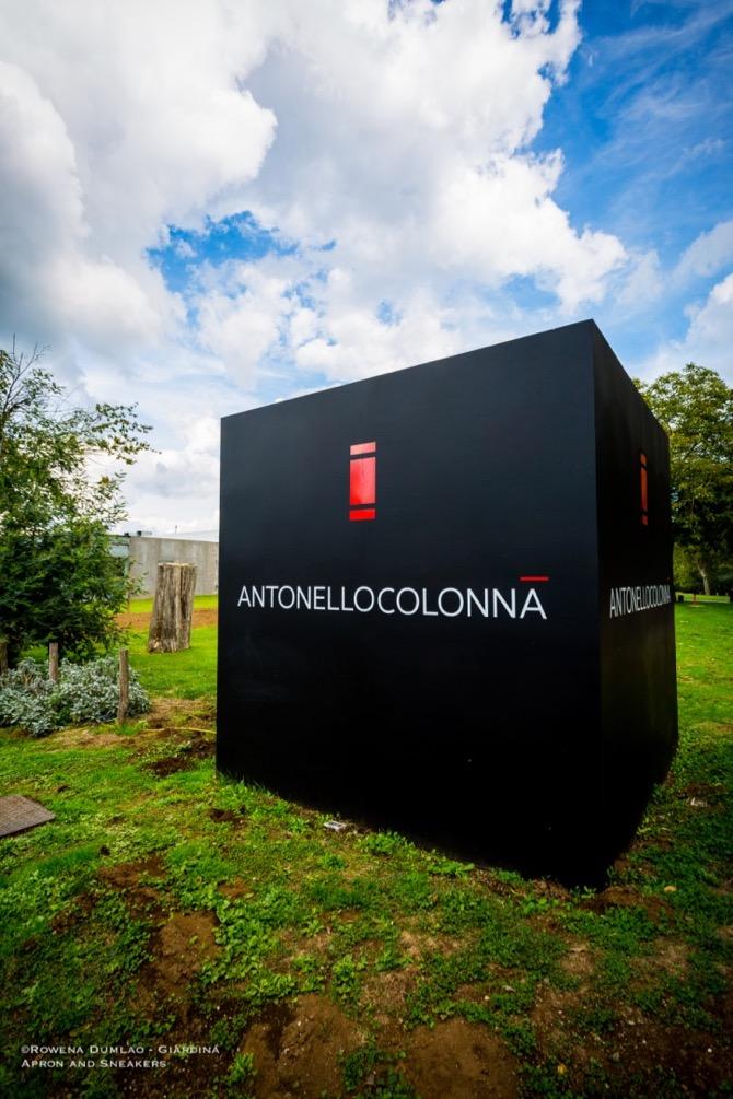 AntonelloColonna-1