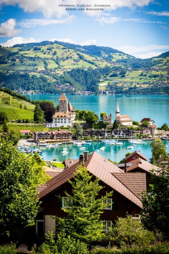 Spiezer Winery in Spiez, Switzerland
