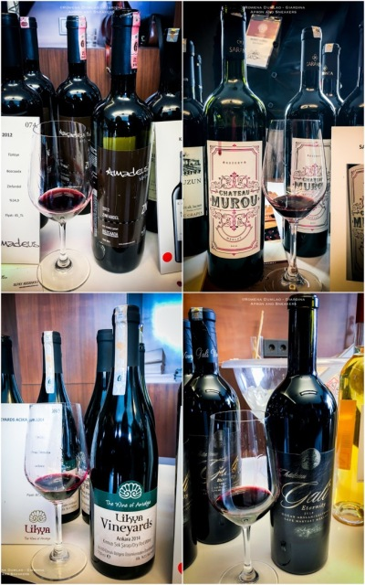 SommeliersSelectionIstanbul6