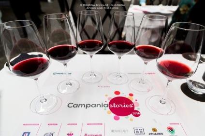CampaniaStories2018-9