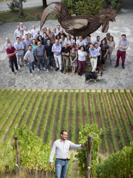 Photos from Rocca delle Macie website