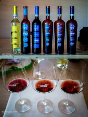 Expressions of Nebbiolo in Piedmont 11