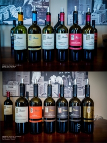 Expressions of Nebbiolo in Piedmont 20