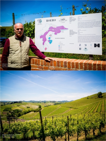 Expressions of Nebbiolo in Piedmont 27