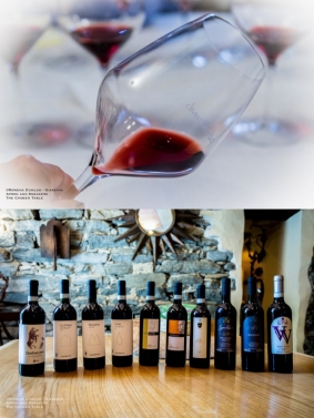 Expressions of Nebbiolo in Piedmont 45