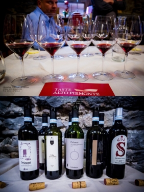 Expressions of Nebbiolo in Piedmont 46