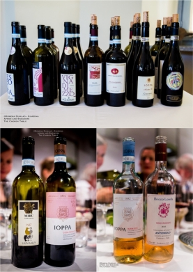 Expressions of Nebbiolo in Piedmont 58