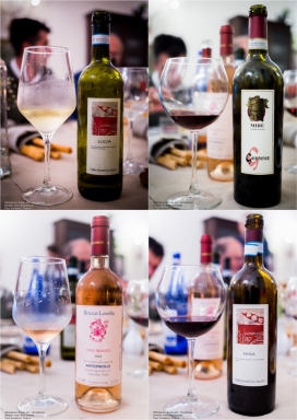 Expressions of Nebbiolo in Piedmont 67
